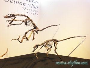 飛びかかる恐竜
