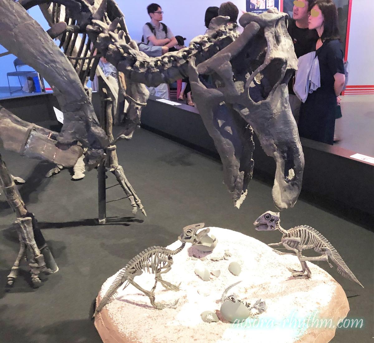 子育てする恐竜